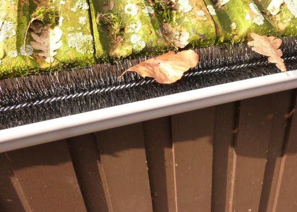 Dachrinnenbürste 3,16€/m Laubschutz Blätter Schutz Tier Dachrinne Bürste Ø10,5cm